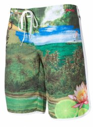 Шорты Женские Mystic 2015 Framed Boardshort Pale Mint